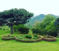 Villa Piazzo