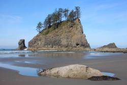 Second Beach Trail