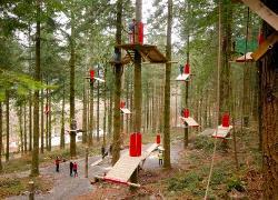 Zip World Fforest