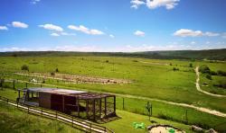 Ostrich Valley