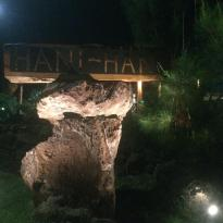 Hani Hani TunuAhi&Bar