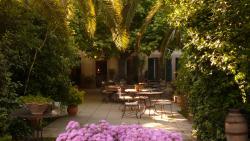 Hotel Beausejour Les Palmiers