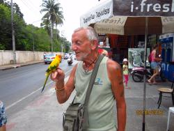 me on a working, its a guardman hawing thise parrot