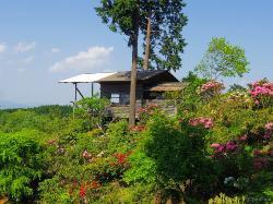 Oyama Shakunage Garden