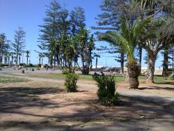 Jardin Mohammed V