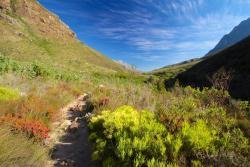 Jonkershoek Nature Reserve