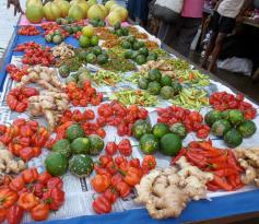 Savusavu Farmers' Market