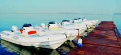 Pomar - Boat Rentals