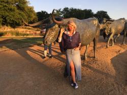 Discover Dallas Tours