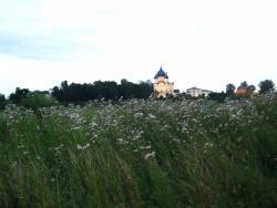 Ilinskiy Meadow