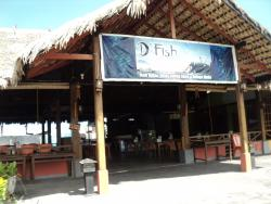 D'Fish