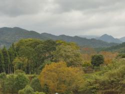 Osumi Prefectural Regional Park