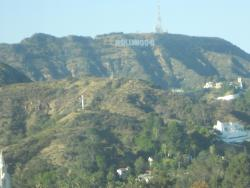 My window view of the Hollywood Sign