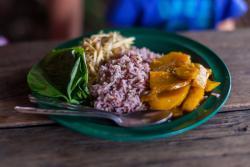 Vegetarian Thai Orchid