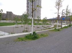 Pfingstweid Park
