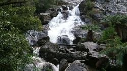 St Columba Falls Reserve