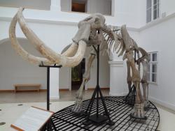 Matra Muzeum