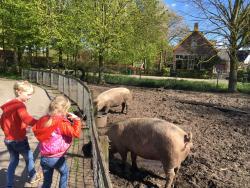 Stichting Milieu Educatie en Kinderboerderij