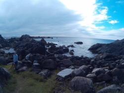 Ilha das Campanhas