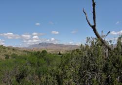 Muleshoe Ranch