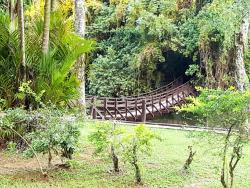 Saudade Lake