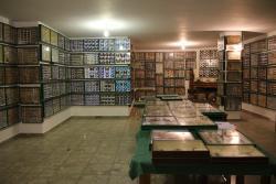 Εντομολογικό Μουσείο Βόλου