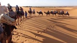 Camel ride caravan
