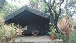 Amazing Stay in the Lap of Nature - Monica Tea Bungalow