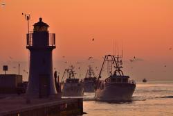 Fattoria del Pescatore
