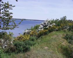 Halbinsel Devin