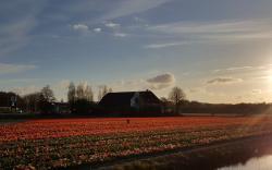 Old Zandvliet Farm