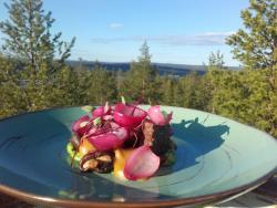 Restaurant Lapland Hotels Sky Ounasvaara