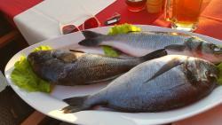 Frischer Fisch kann am Tisch ausgewählt werden und wird anschließen zubereitet.