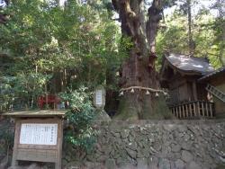 Oita Gokoku Jinja Shrine