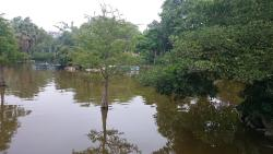Gran Lago del Parque de la Ciudadela