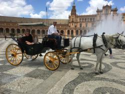 Horse & Carriage Tour