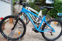 Montona Tours - Rent a Bike Point Motovun