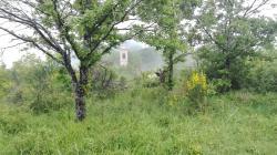 Santuario della Beata Vergine della Consolazione di Montovolo