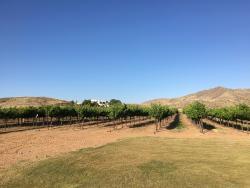 Tapas at Coronado Vineyards