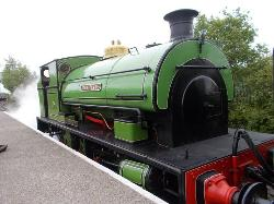 Stephenson Steam Railway