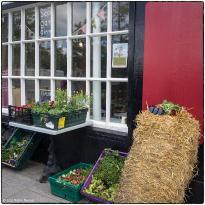 Siopa Gan Ainm Farm Shop & Cafe