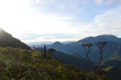 Mt Lumot
