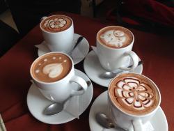 Cacao & Cacao