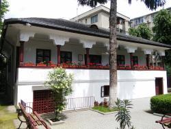 Ion Luca Caragiale Museum