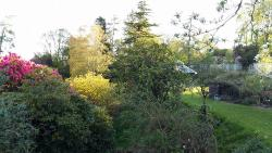 view from garden