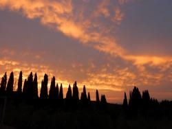Outstanding stay in Tuscany with great hosts