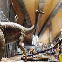 Gunma Natural Museum