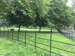 Myatt's Fields Park