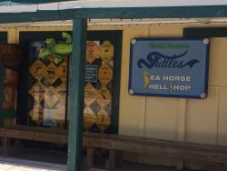 Tuttle's Sea Horse Shell Shop