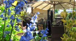 Secret Tea Garden